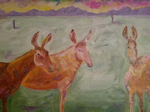 Donkeys for Helen